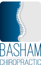 Basham Chiropractic nowra blue and grey spine logo